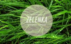 Коворкинг для родителей с детьми Зеленка / Zelenka