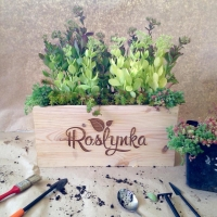Садовый центр Рослынка / Roslynka