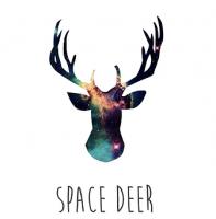 Креативная школа английского языка Спейс Дир / Space Deer